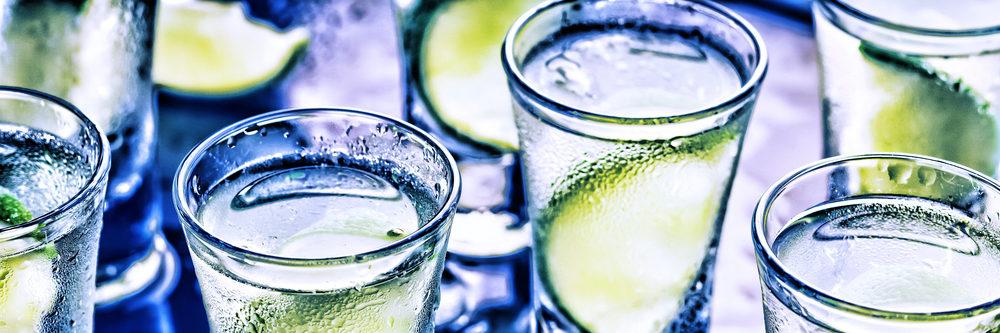 shutterstock_733605211 Gin (1000x333)